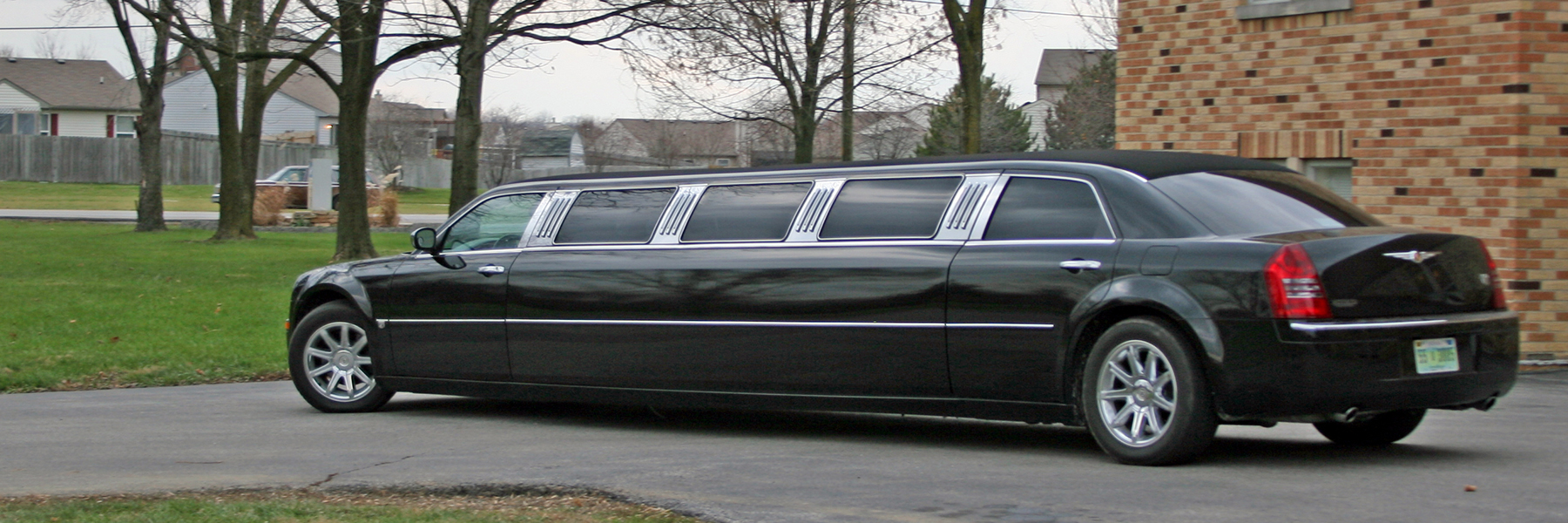 Making Sure Your Cats Are Fed During a Limo Ride